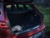 Seat Leon ST Cupra 300 (21)